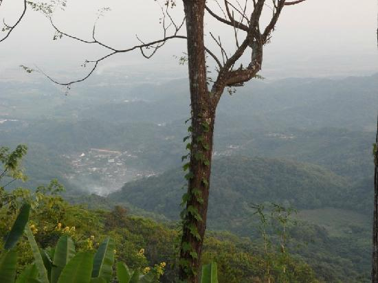 DoiTung Lodge : View from the restaurant