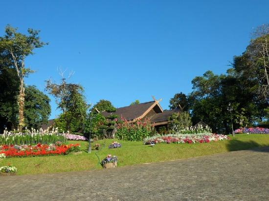 DoiTung Lodge : The Royal Palace of the King's mother at Doi Tung