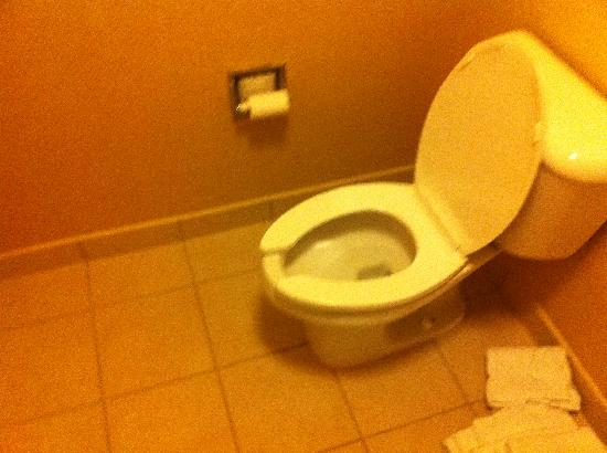 Courtyard Tarrytown Greenburgh: toliet