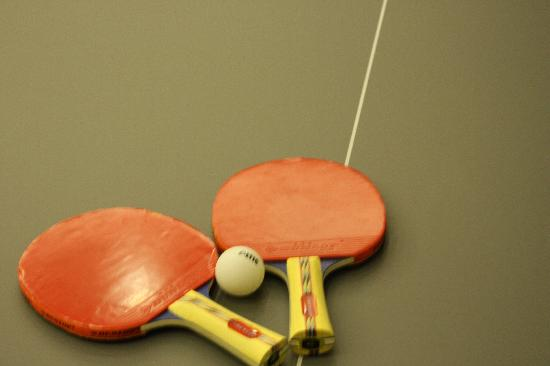 SV Business Hotel Diyarbakir : table tennis