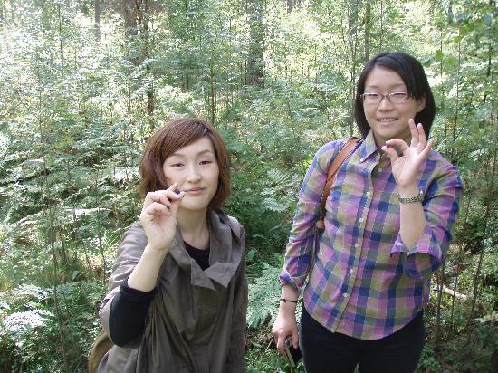 Natura Viva: Nuuksio Forest Lake Trail : Blueberrys taste great!