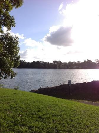 Riverbreeze Tourist Park: View from our caravan of the Moruya River