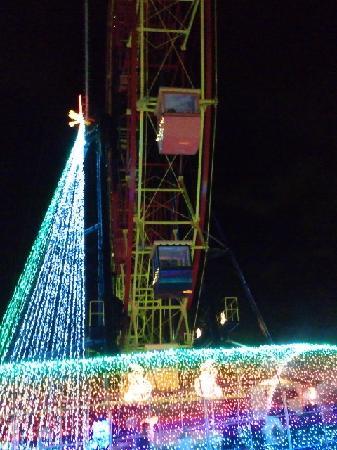 東京ドイツ村, 夜の観覧車です