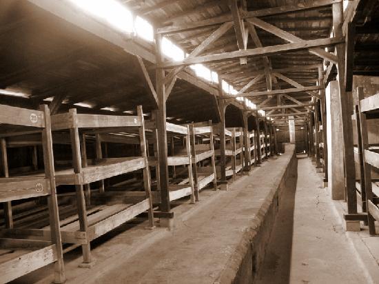 Auschwitz-Birkenau State Museum: dormitori Birkenau