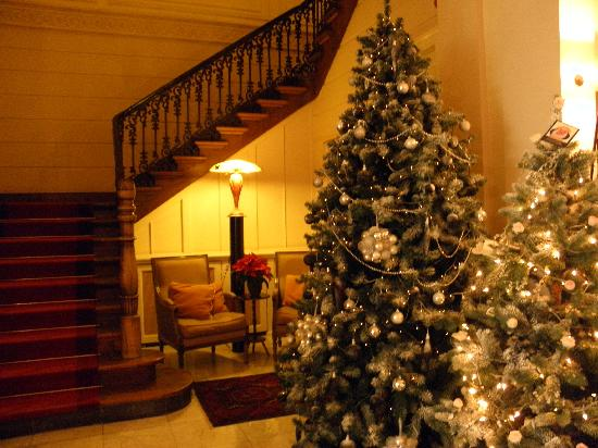 Hotel 't Sandt: Christmas Trees in the Lobby