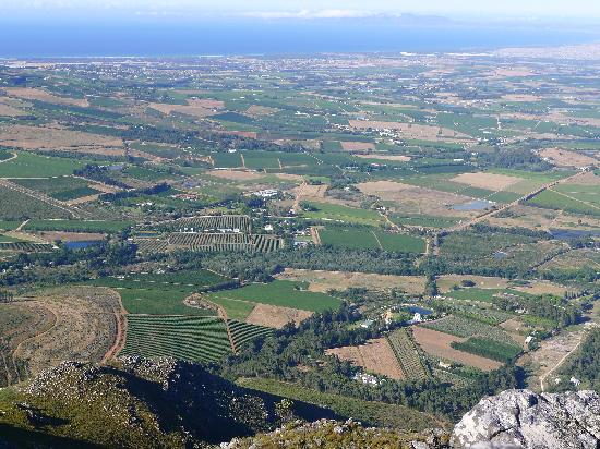 Dornier Homestead: Dornier Wine Estate seen from Stellenbosch Mountain