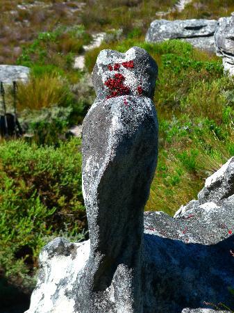 Dornier Homestead: Rock formations on Stellenbosch Mountain