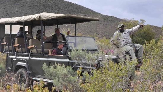 African Game Lodge: Nature Drive