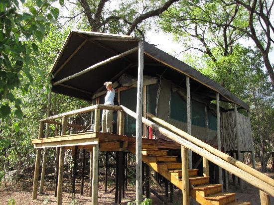 Kwara Camp - Kwando Safaris: our tent