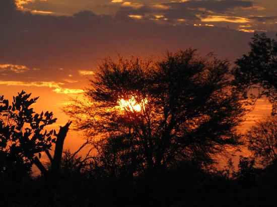 Kwara Camp - Kwando Safaris: Sunset
