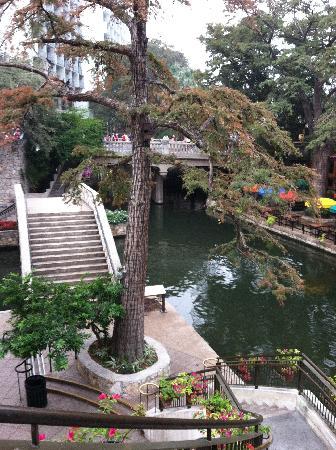 Wyndham Riverside Suites: Riverwalk view from street level