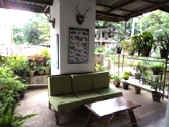 ‪‪Madugalle Friendly Family Guest House‬: Balcony/Outdoor sitting area Level 1‬