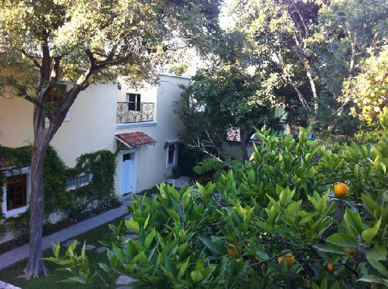 Hotel Villa San Francisco : View of the garden at VSF