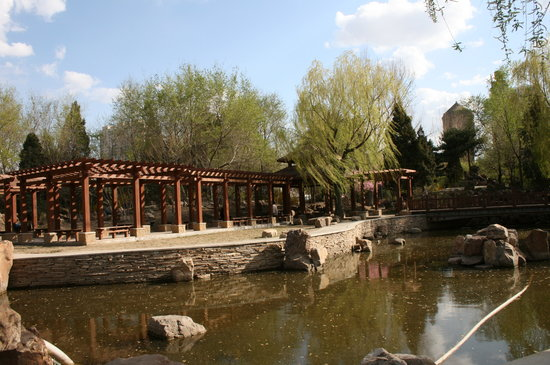 Shenyang Zhongshan Park Photo