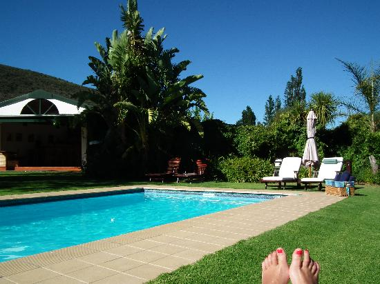 Altes Landhaus Country Lodge: The gorgeous heated pool