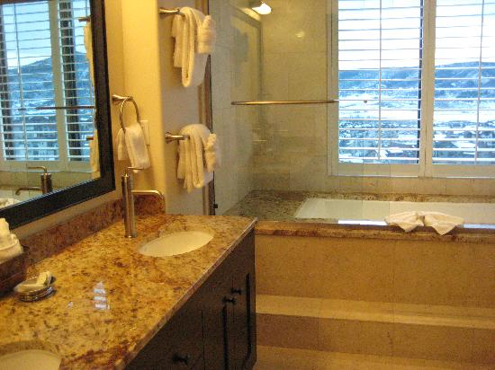 Edgemont Condominiums: master bath
