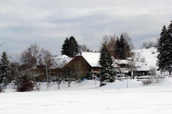 Hotel zum Ochsen from across the adjacent park