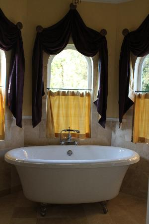 Vine & Roses Bed & Breakfast: Soaking tub
