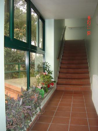 Hotel Terme Luna : scale verso la piscina