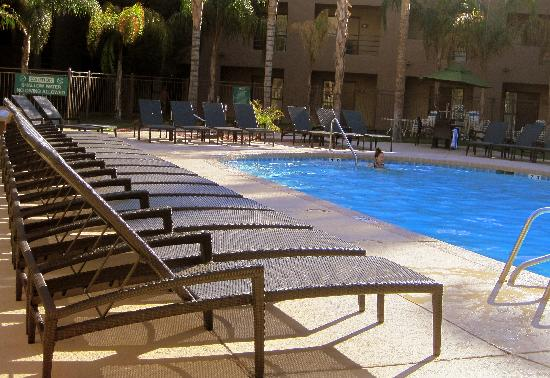 Embassy Suites by Hilton Hotel Phoenix - Tempe: Our great outdoor pool