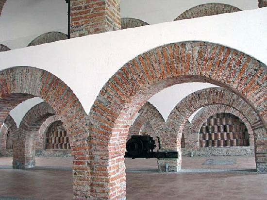The Museum Of Alejandro Rangel Hidalgo: Nogueras - Hildago Museum