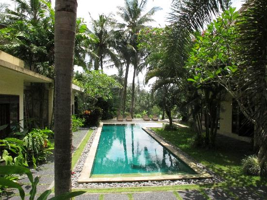 Villa Areklo: Pool