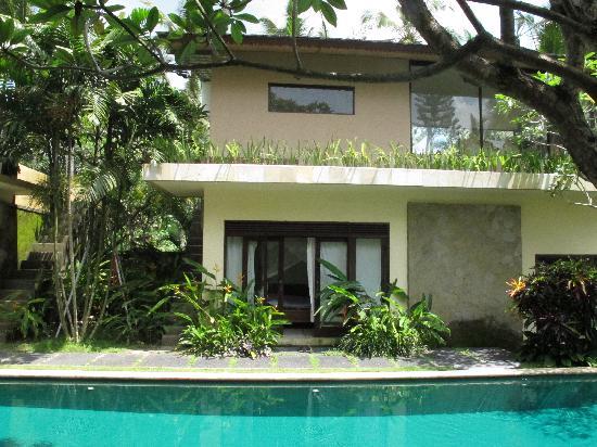 Villa Areklo : Pool