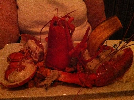 Blue Moon Seafood and Chophouse: Lobster