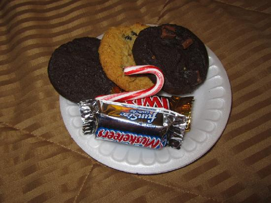 Comfort Inn Airport: OMG... cookies, still warm!