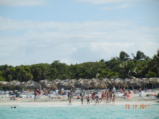 Sol Palmeras: beach view