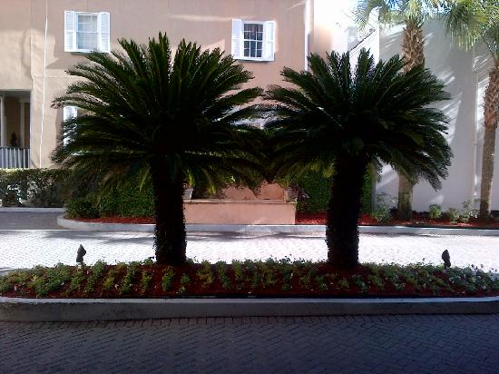 Renaissance Charleston Historic District Hotel: Photo from right outside the lobby.