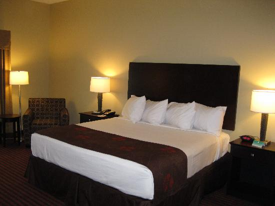Best Western Plus Louisa: Our King Room