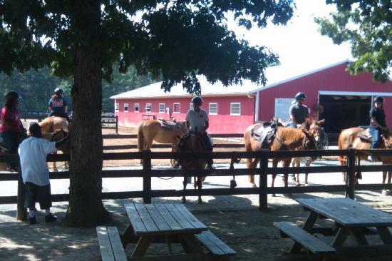 Lodge Picture Of Shenandoah Crossing Gordonsville