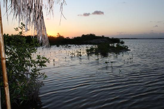 Ally's Guest House Belize: Sunset from Palapala on lagoon