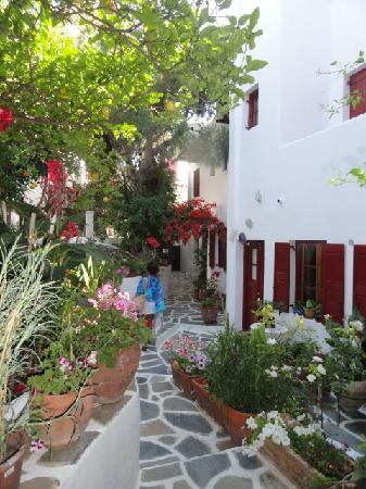 Villa Pinelopi Apartments & Rooms : The gardens