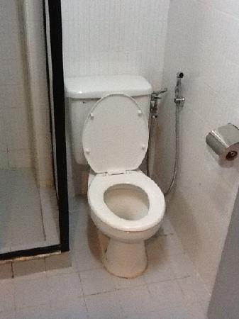 GoodHope Hotel Skudai-Johor Bahru: very narrow space for a toilet.