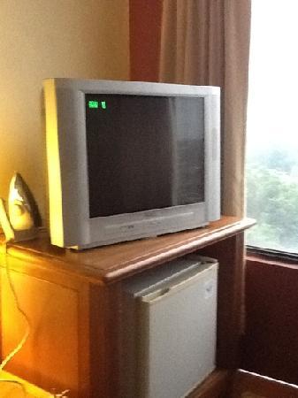 GoodHope Hotel Skudai-Johor Bahru: no LCD tv.