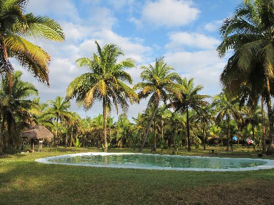 Hotel Relais du Masoala: Relais de Masoala pool