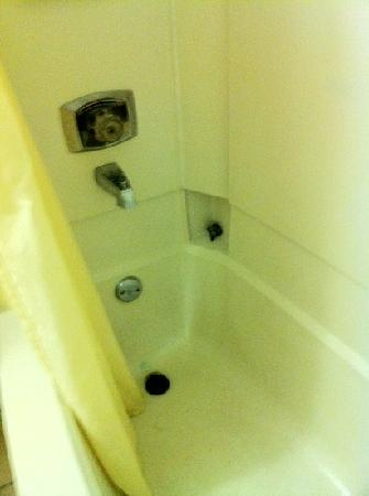The Lodge at Pensacola: Shower stained, dripping, hardware off to the side, shower head sprayed every which way.
