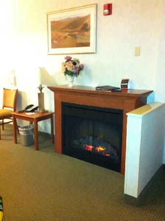 Comfort Suites Schaumburg : electric fireplace