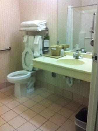 Comfort Suites Schaumburg : large handicapped bathroom