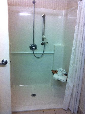 Comfort Suites Schaumburg : handicapped shower