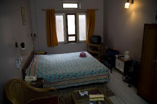 Tara Niwas: hotel room #1