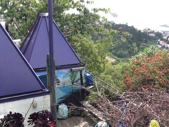 Koromiko Homestay: the view from Koromiko