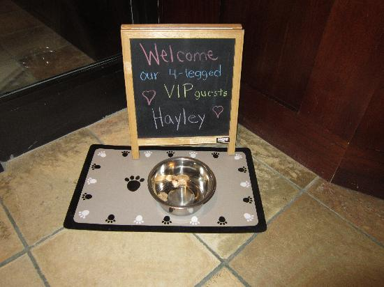 Inn on Woodlake: our dog was welcome!