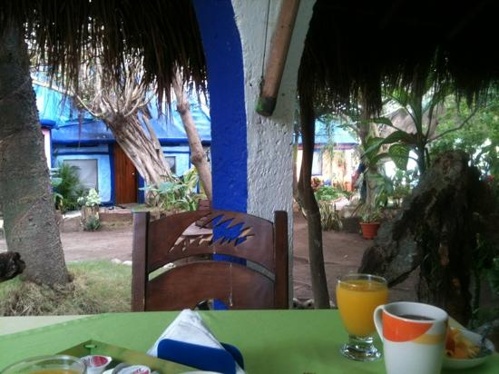 Amar Inn B&B : breakfast on the terrace