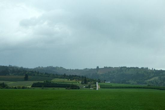 Willamette Valley - beautiful green fields and rolling hills