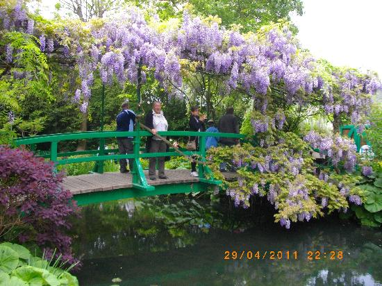 "Fondation Claude Monet: ""The Bridge"""