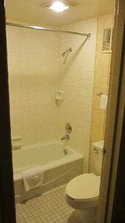 Americas Best Value Inn & Suites: Bathroom