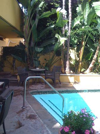 Mosaic Hotel Beverly Hills : pool
